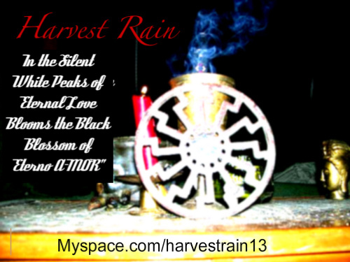 Harvest Rain Music at Myspace